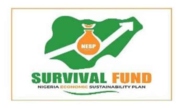 Survival Fund Applicants: Steps To Follow To Successfully Get Your Fund