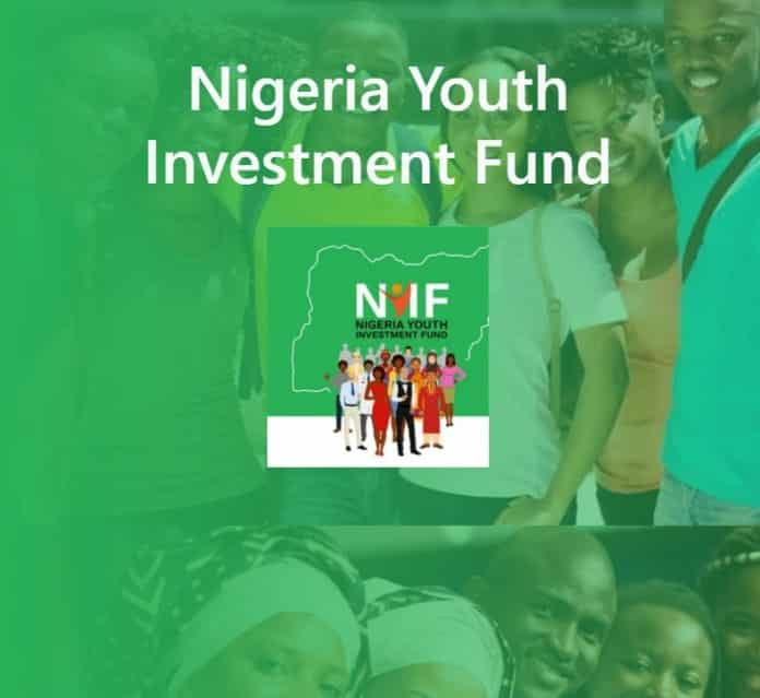 FG Grant : NYIF Allocates 250-500 Thousand Grants For These Nigerians