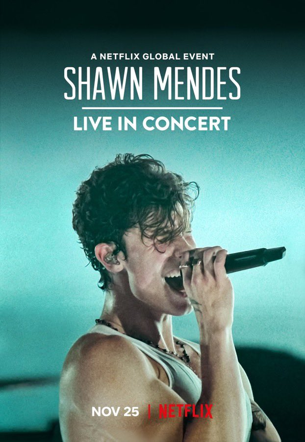 Shawn Mendes Live In Concert Is Out, Watch #LiveInConcert Here