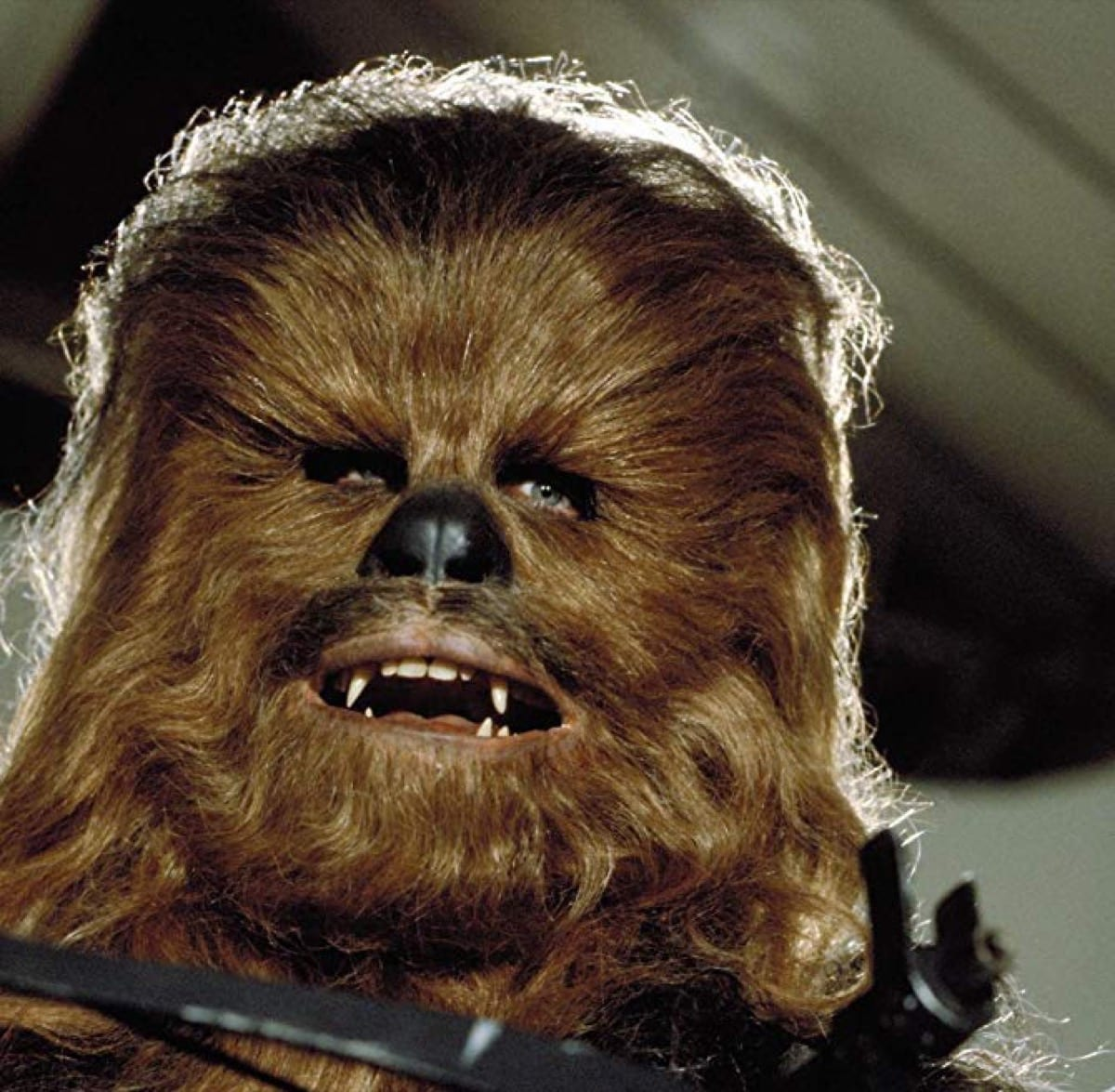 Chewbacca in Return of the Jedi